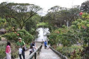 La Mesa Eco-Park stairs