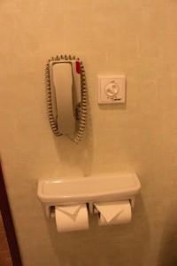 Bathroom Phone