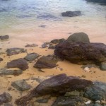 Kanaway Island Beach Rocks