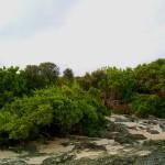 Kanaway Island Terrain