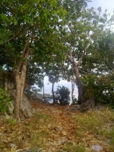 Kanaway Island Uphill