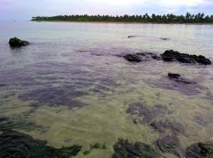 Low Tide Kanaway Island