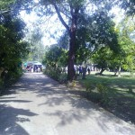 M.S. Emerga Street