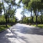A Road in Sun Island