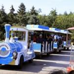 Sun Island Tourist Car