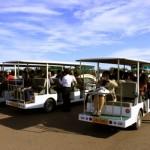 Sun Island Tourist Carts