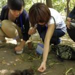 Tourists Feeding Squirrel