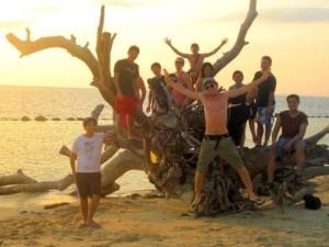 Fallen tree in Potipot Island