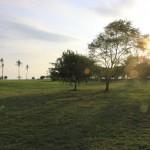 Field Potipot Island