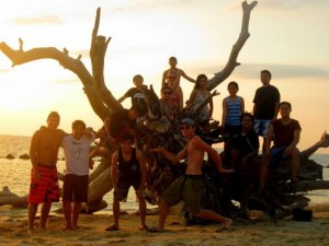 Picture taking at a fallen tree in Potipot Island