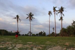 Potipot Field