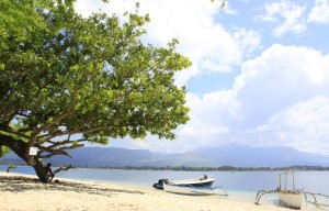 Potipot Island Shore