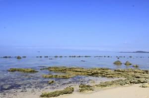Rocky part of Potipot Island