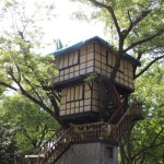 Tree house in Potipot Island