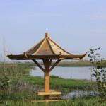 Binjiang-Wetland-6