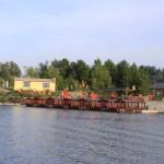Binjiang-Wetland-Dock