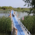 Plastic-Bridge-Binjiang-Wetland