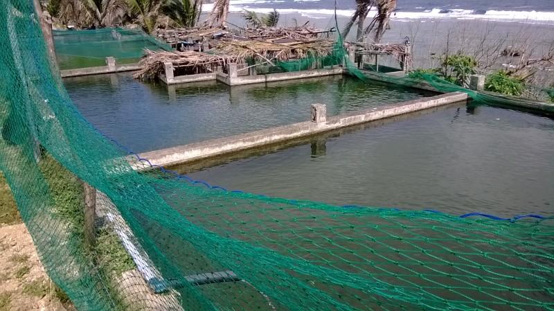 Diura Fishing Village