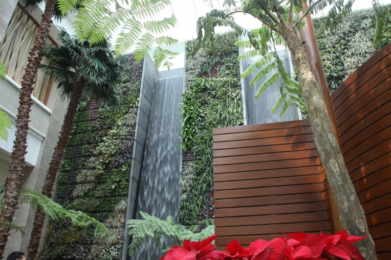 Waterfalls-Sky-Tower